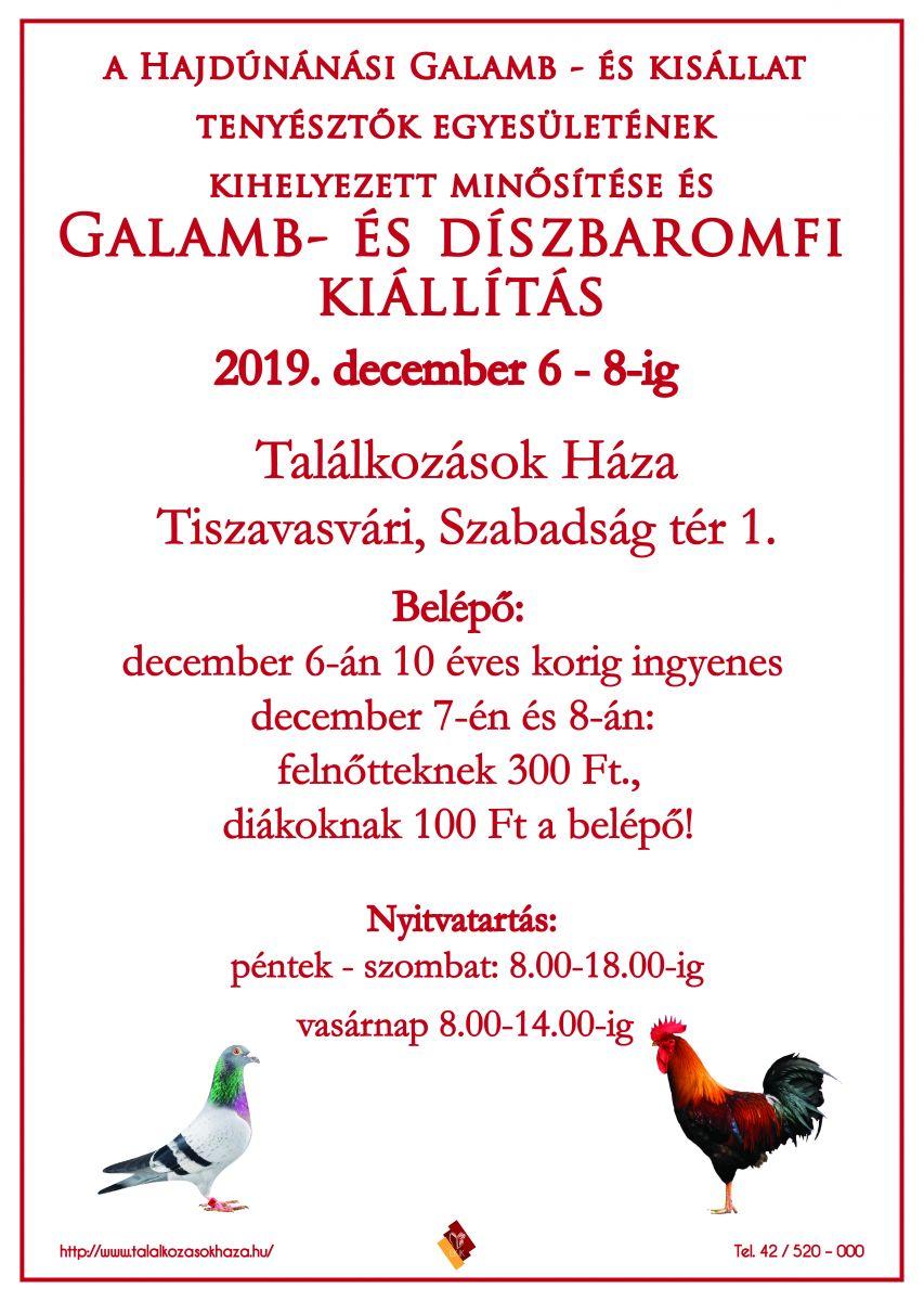 Galamb és díszállat kiállítás