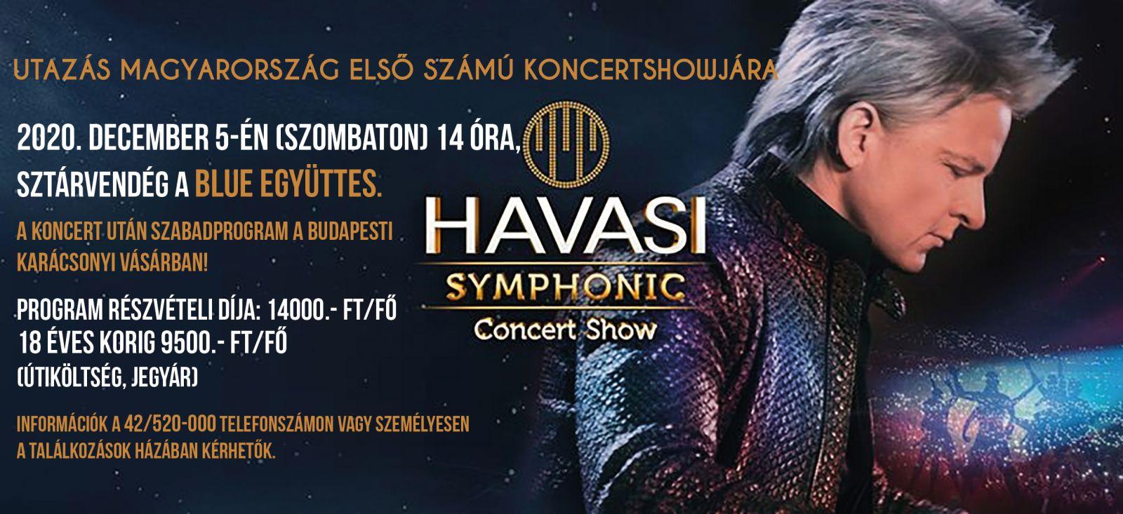 Budapest - Havasi symphonic concert show